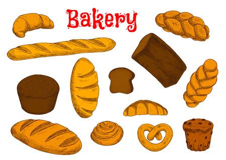 bollos: Pan de centeno y trigo panes largos, baguette y croissant francés, rollo de canela, magdalena con pasas, bollos dulces y trenzadas pretzel bávaro. Panadería y pastelería bocetos Vectores