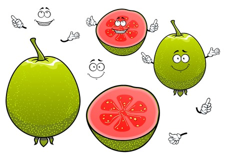 greengrocer: Freshly harvested mexican green guava fruits cartoon characters with whole and halved tropical fruits with happy smiling faces. Nice in vegetarian menu, recipe book, kitchen accessories and healthy food design