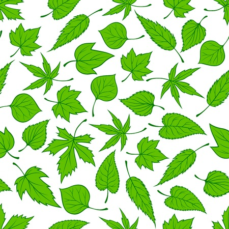 young tree: Decorative seamless spring nature pattern with ornament of sunny green young tree leaves randomly scattered over white background. May be used as retro wallpaper, backdrop fills, fabric design