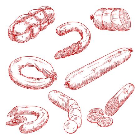 Gerookt vlees worst rood schets tekeningen met worstjes, salami, bloedworst, kruidig pepperoni, mortadella met blokjes van vet en Bologna ringen. Gebruik als slagerij, menu restaurant of receptenboek ontwerp