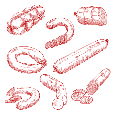 Smoked meat sausages red sketch drawings with frankfurters, salami, blood sausage, spicy pepperoni, mortadella with cubes of fat and bologna rings. Use as butcher shop, restaurant menu or recipe book design Vectores