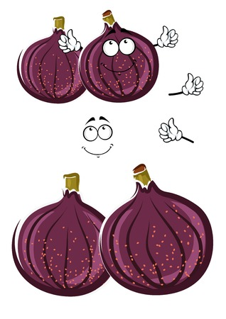 greengrocer: Luscious fresh cartoon deep violet common fig fruits with cute smiling face. Sweet exotic fruit character for vegetarian dessert, agriculture harvest or recipe book design