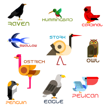 urban wildlife: Owl, eagle, swallow, pelican, hummingbird, penguin, ostrich, raven, cardinal, stork colorful birds flat icons. Cartoon wild, forest, aquatic, tropical and urban birds for nature mascot, zoo symbol and wildlife theme design