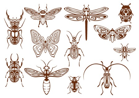 Brown tribal butterfly, bee, moth, dragonfly, wasp, ladybug, scarab and stag beetles, bumblebee, firefly and shield bugs. Decorative insects, adorned by ethnic ornaments for tattoo, embellishment or mascot design usage Vettoriali