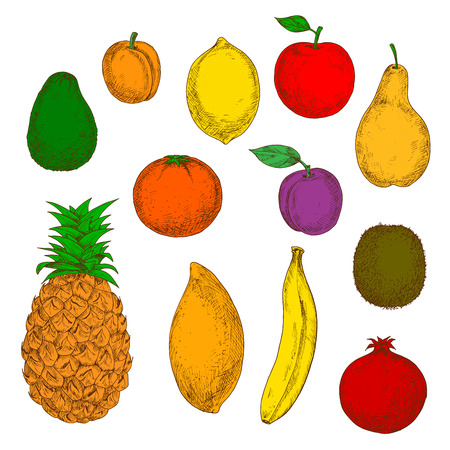 flavorful: Freshly harvested flavorful pear, red apple, tropical banana, pineapple, orange, mango and lemon, sweet peach, plum, ripe avocado, pomegranate and kiwi fruits. Retro colored sketchy fruits for agriculture or organic farming design