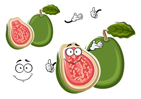 guava fruit: Juicy tropical apple guava fruit cartoon character with green rough peel and cross section with delicate pink flesh and happy smiling face on the cut. May be use as exotic dessert recipe, agriculture or kitchen interior design usage Illustration