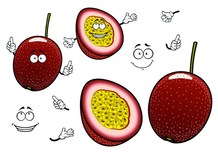 usage: South american cartoon passion fruits characters with whole dark purple fruit and slice with juicy yellow flesh. Funny exotic fruits for childrens menu or recipe book design usage