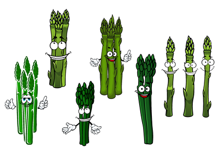 wholesome: Organically grown wholesome cartoon bundles of asparagus vegetables characters with juicy green spears and happy smiling faces. Use as vegetarian recipe, agricultural harvest or kitchen interior design Illustration