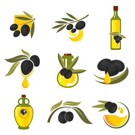 oil crops: Spanish black olives symbols of olive tree branches with fresh fruits and bottles of healthful extra virgin olive oil. May be use as vegetarian nutrition theme, recipe book or food packaging design Illustration