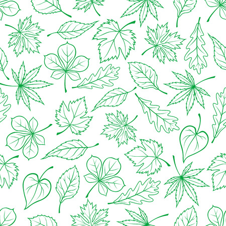 wood creeper: Seamless carved green leaves pattern for ecology theme or retro wallpaper design with sketched foliage of maple and oak, chestnut and basswood trees and grape vines randomly scattered on white background