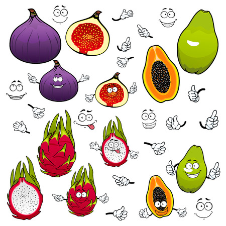 purple fig: Cartoon flavorful green papaya, juicy pink dragon fruit and sweet purple fig fruits with funny comics faces. Exotic tropical fruits characters for kids menu or vegetarian dessert recipe design