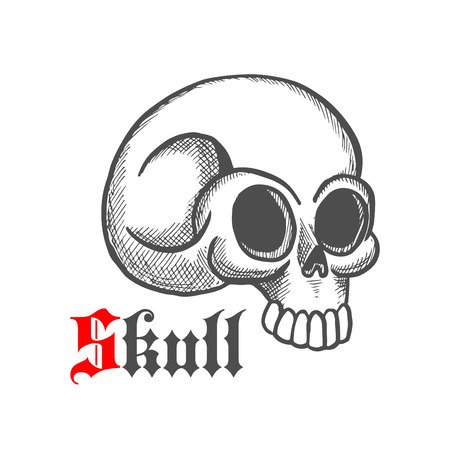 eye sockets: Vintage engraving illustration of monstrous human skull with broken temporal bone. May be use as tattoo, jewelry or t-shirt print design