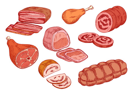 Cooked meat delicatessen sketches with smoked pork ham, sticks of bologna and mortadella sausages, fried chicken leg, baked pork and beef tenderloins. Use as recipe book or butchery shop symbol design
