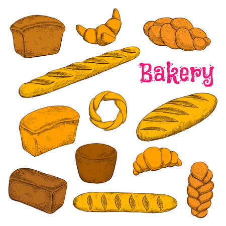 bread: Fresh baked morning pastries and bread sketch icons for bakery shop design with french croissants and baguettes, turkish braided buns and bagel, loaves of dark rye, wheat and whole grain bread