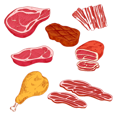 Fresh and grilled beef steaks, thin slices of bacon and prosciutto, baked beef tenderloin and turkey leg sketch icons. Nutritious and healthy meat products for grill bar or butcher shop design