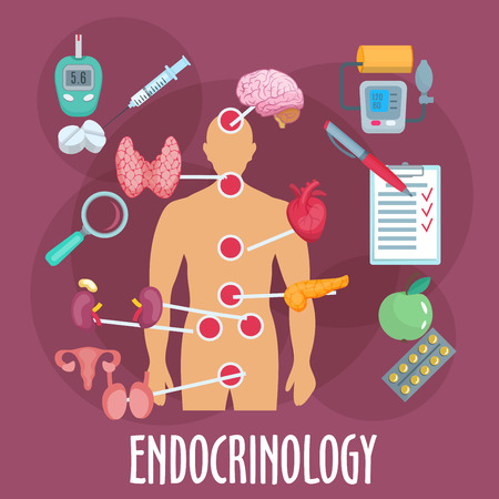 Endocrinology medical icon of human body with marked major internal organs and endocrine glands, pills and insulin injection, medical checkup form, glucose and blood pressure monitoring, healthy food and vitamins. Flat style
