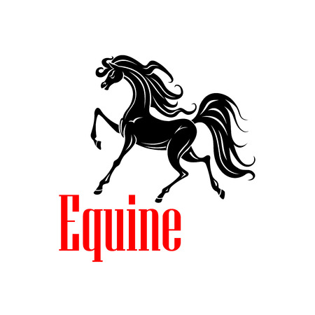 dressage: Beautiful andalusian mare icon for dressage competition badge or horse breeding farm symbol design usage. Black silhouette of an upper level dressage horse at the passage test