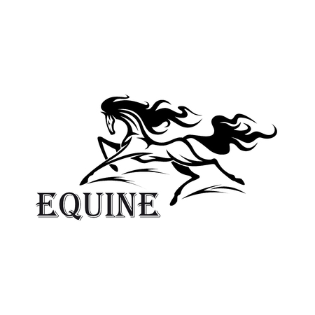 eventing: Riderless strong andalusian stallion running with flying curly mane and tail. Great for equestrian sport, horse show or riding club design