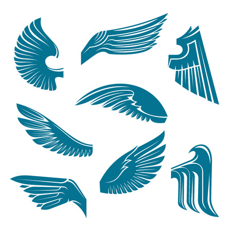 spread wings: Tucked and spread wings vintage heraldic symbols of blue feathered wings of eagle, swan, falcon or raven with tribal elements. May be used as coat of arms, tattoo or jewellery design