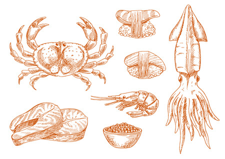 scallop: Fresh atlantic crab, squid and shrimp, sushi nigiri with tuna and scallop, salmon steaks and smoked roe red sketch icons. Old fashioned recipe book, oriental seafood restaurant symbol design usage Illustration