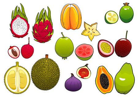 guava fruit: Freshly plucked bright yellow star fruit and pink litchi, soft and ripe passion fruit and feijoa, fig and papaya, juicy guava, dragon fruit and sweet durian fruits supplemented slices, showing seeds and flesh