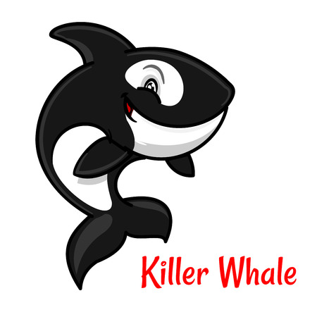 orca: Black and white spotted killer whale cartoon character leaping out the water to breathe. Cute orca with happy smile for zoo mascot or t-shirt print design Illustration