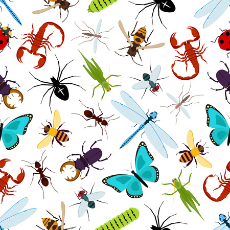 Colorful insect animals seamless pattern. Coccinellidae or ladybug, lady beetle and dragonfly, lucanus cervus and wasp or bee, araneus orb spider and wood ant, grasshopper and stag beetle Ilustração