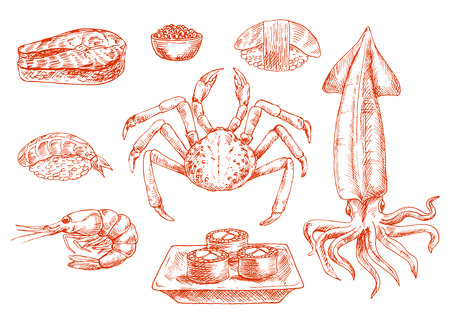 food preparation: Sketch of raw seafood cuisine. Crab with claws and squid with tentacles, shrimp and salmon dish, rolls on board and sushi with rice, organic caviar or roe Illustration