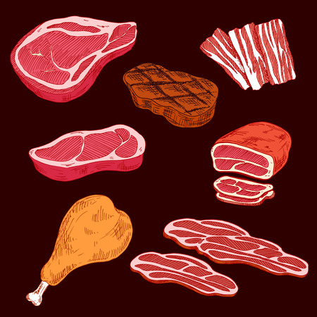 Sketch of sliced crude or raw meat products and ham or leg of pork, steak and sliced bacon, gamon or hind quarter. Concept of fat and high calorie food or nutrition. Illustration