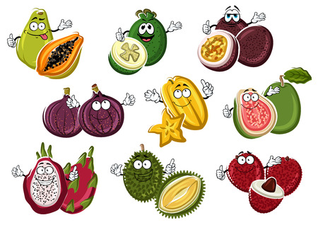 fertile: Smiling and happy tropical cartoon fruits with hands. Vegetarian lychee or rambutan with seed, cutted guava and fresh fig, juicy pitaya and smelly durian, ripe feijoa and raw maracuja, organic carambola