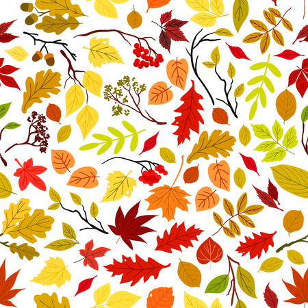 Autumn leaves seamless pattern background. Vector leaf and stem elements. Tree seeds and fruits. Foliage of oak, maple, birch, aspen, chestnut, elm, poplar, rowanberry acorn Illustration