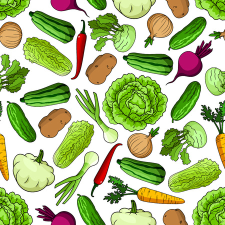 organic farming: Seamless pattern of fresh vegetables with cabbage, onion and chili pepper, zucchini, cucumber, carrot and potato, beetroot, kohlrabi and pattypan squash vegetables. Organic farming and vegetable garden theme design