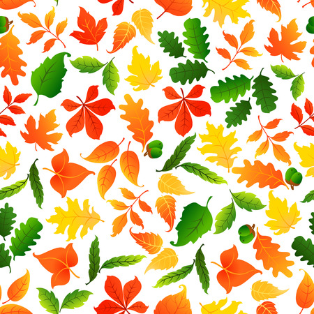 Colorful leaves seamless pattern background. Autumn foliage wallpaper with vector elements of maple, birch, aspen, elm, poplar Illustration