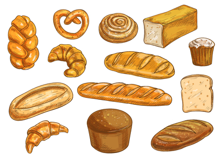 rye bread: Bread sorts and bakery elements set. Vector pencil sketch of rye bread, ciabatta, wheat bread, muffin, bun, bagel, sliced bread, french baguette, croissant, pretzel Illustration