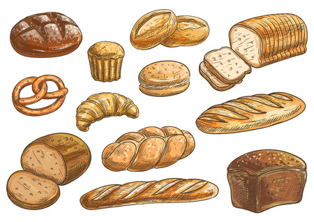 rye bread: Bread sorts and bakery icons. Vector pencil sketch rye bread, ciabatta, wheat bread, muffin, bun, bagel, sliced bread, french baguette, croissant pretzel biscuit Illustration