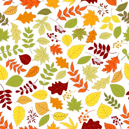 elm: Colorful autumn leaves and berries seamless background. Wallpaper with vector pattern of trees and plants foliage oak, birch, maple, elm, poplar, aspen