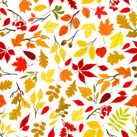 rowanberry: Colorful autumn leaves and berries seamless wallpaper. Background with vector pattern of foliage, acorn, oak, rowanberry, maple, elm, birch, aspen, rowan poplar Illustration