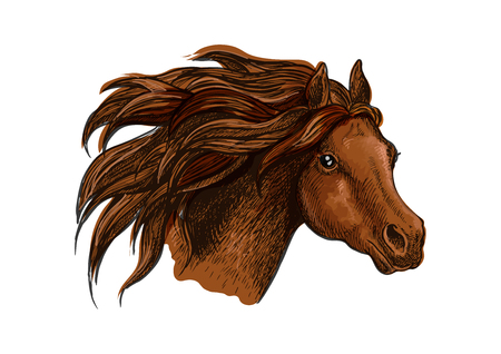 gazing: Horse head with wavy mane close-up portrait. Beautiful brown stallion running with wind in mane and shiny eyes
