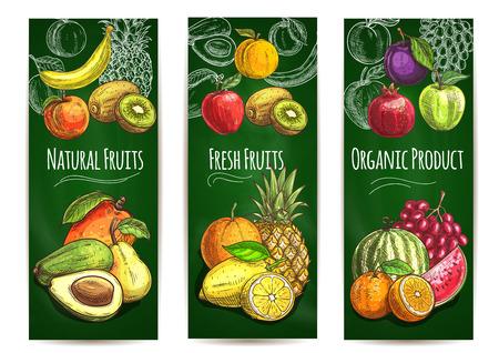 ciruela: fresca orgánica fondo frutas jugosas. Vector Bosquejo de la pera, naranja, aguacate, manzana, melocotón, plátano, kiwi, limón, mango, piña, sandía ciruela granada de uva para la tienda de la bandera etiqueta del envase bebida de jugo Vectores