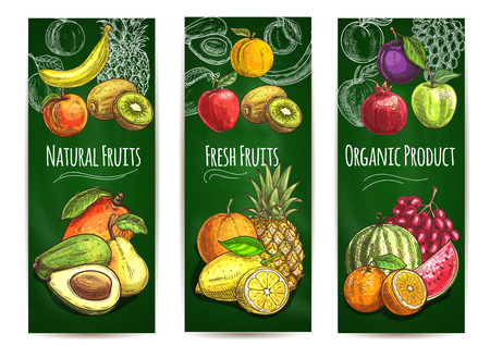 pomegranate juice: Organic fresh juicy fruits background. Vector sketch pear, orange, avocado, apple, peach, banana, kiwi, lemon, mango, pineapple, watermelon pomegranate grape plum for store banner juice drink package label