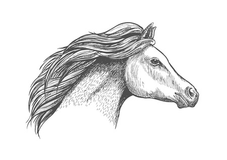 filly: Racehorse mare head sketch with flowing curly mane. Horse racing badge or equestrian eventing symbol design