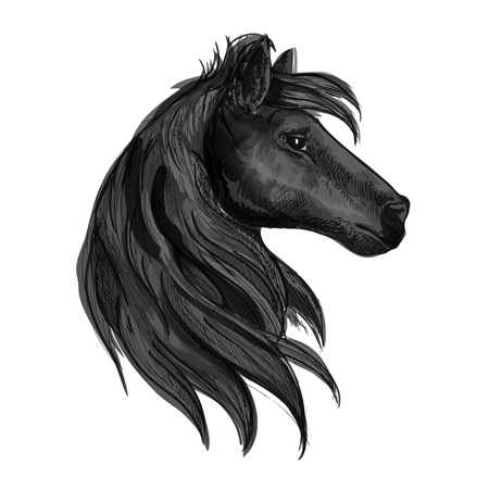 pace: Black horse head symbol with purebred stallion. Horse racing badge, equestrian sporting competition or riding club symbol design