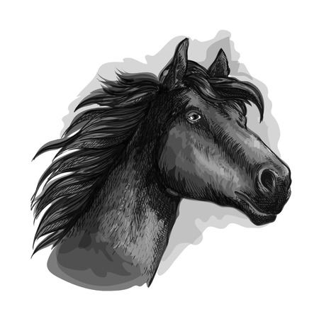 Horse looking ahead. Horse head and neck portrait. Vector black running free strong stallion Illustration