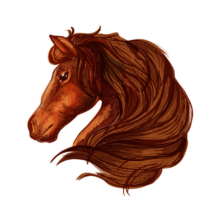 Horse with long wavy and long mane. Portrait of brown bay stallion with shiny eyes and kind glance