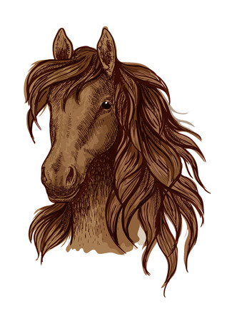 brown eyes: Brown running mustang portrait. Horse stallion looking ahead with wavy mane and kind shiny eyes