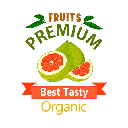 pomelo: Pomelo organic fruit poster. Vector icon for grocery, farm stores, packaging advertising, signboard, label, juice packaging Illustration