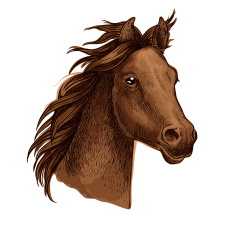 Horse artistic portrait. Beautiful brown mustang with long wavy mane and gazing shiny eyes