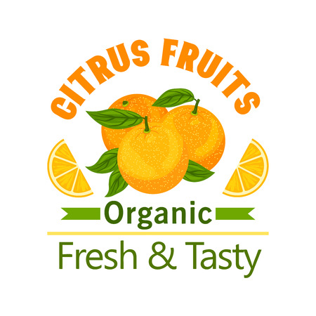 Citrus Fruits poster. Orange fruit vector icon for juice label, drink sticker, grocery, farm store, packaging, advertising