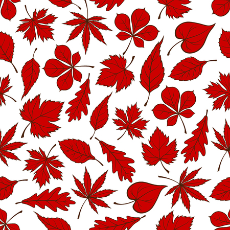 elm: Red autumnal fallen leaves seamless pattern on white background with foliage of oak, maple, chestnut, birch, grape, beech and elm trees. Nature theme or autumn season design