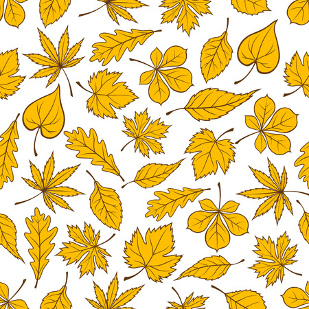 autumnal: Autumn leaves seamless pattern on white background with yellow fallen leaves of autumnal forest trees. Autumn nature theme or interior design